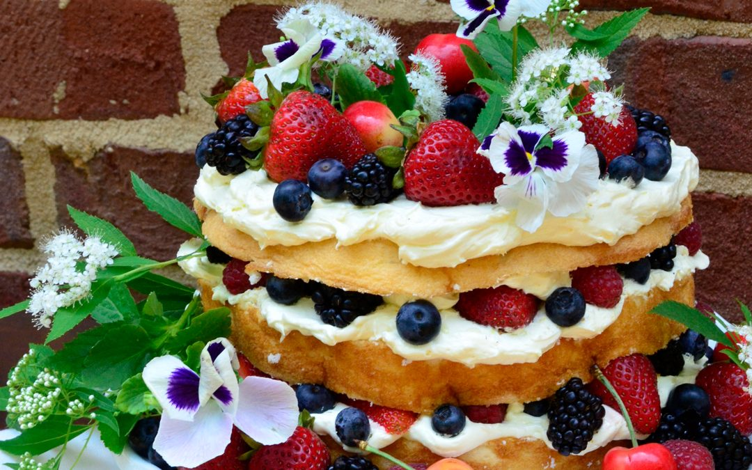 PATTY'S PICK: Angel Food with Lemon Filling and Berries